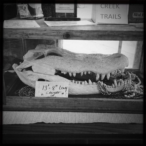 mississippi alligator picayune donsseafood hipstamatic uploaded:by=flickrmobile flickriosapp:filter=nofilter
