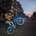 Citibike Wheelie - Williamsburg, Brooklyn by James Prochnik Photography