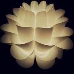 Night of the Lotus.