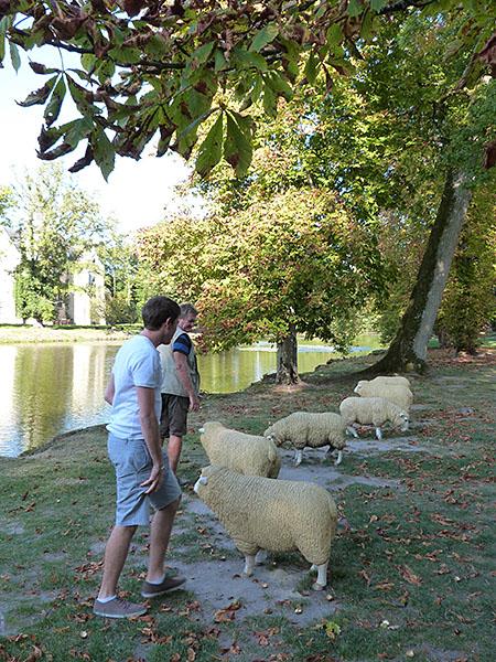 le saute-mouton