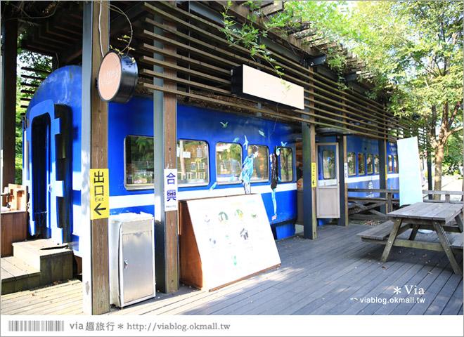 【愛情火車站】合興車站‧新竹內灣新景點!薰衣草森林進駐~有香草舖子+小甜心30