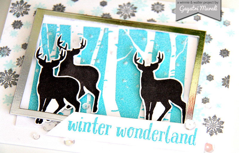 Winter Wonderland closeup2