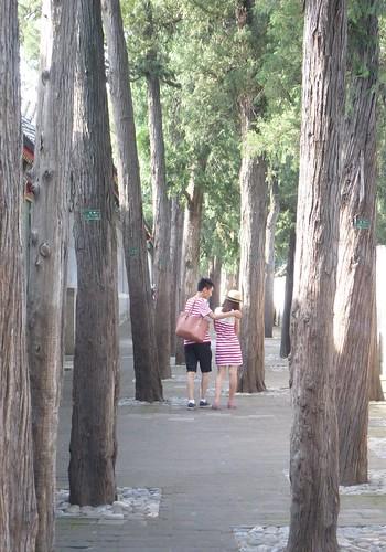 Beijing-Jardin des Plaisirs Harmonieux (2)