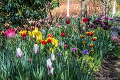 Warawee Gardens