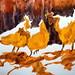 Three chickens, by Ricardo - DSC08162 by Dona Minúcia