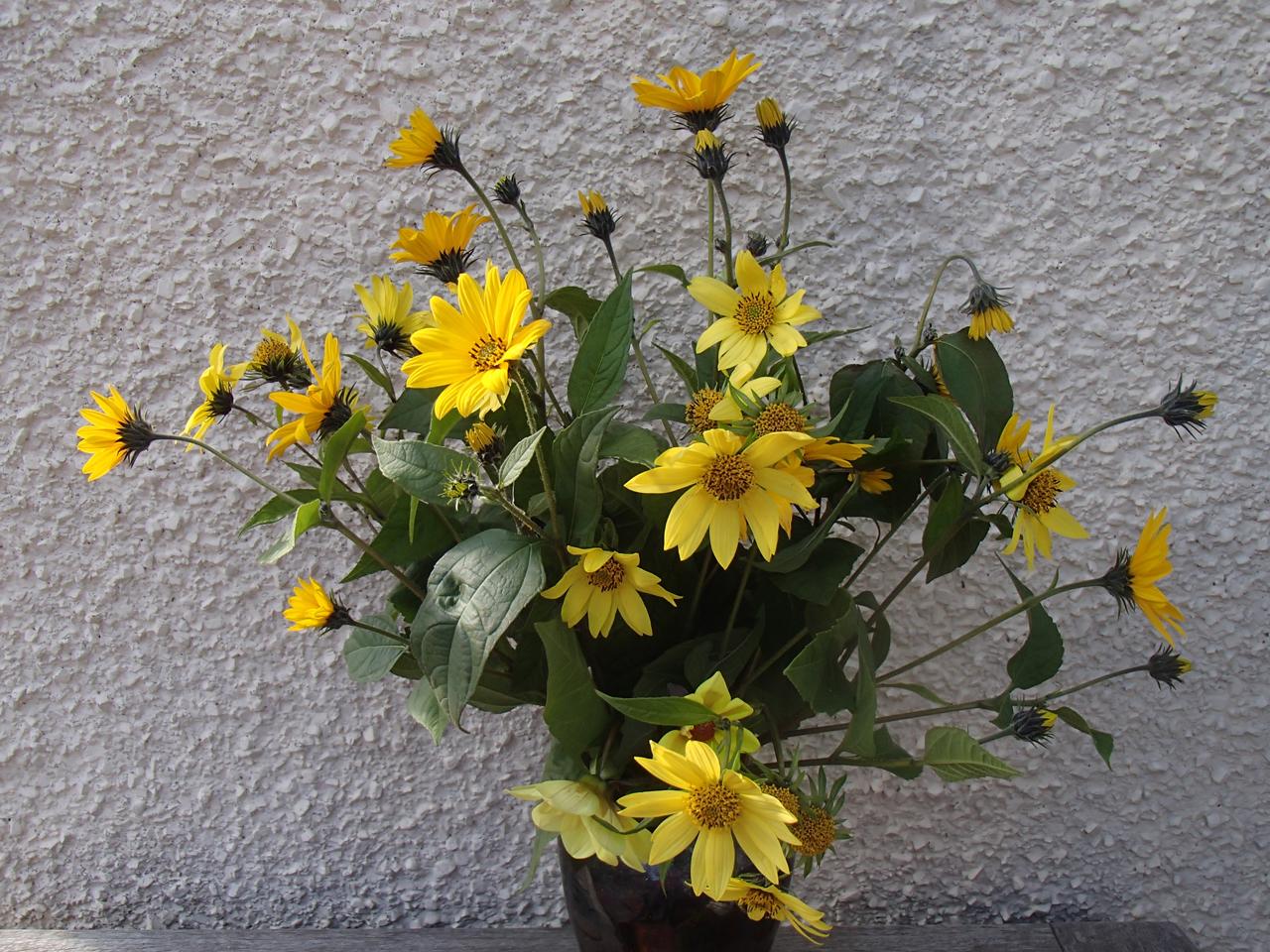 sunshine-in-a-vase