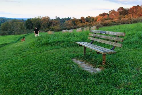 bench virginia unitedstates goldenhour blacksburg heritagepark eosm canoneosm canonefm22mmf2stm canonefm22mm