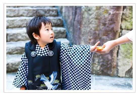 七五三写真 白山神社 岩崎城 愛知県日進市 出張撮影 ナチュラル 自然な データ納品