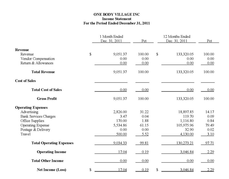 Financial Statement 2011
