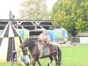 Robin Hood Pageant 2014