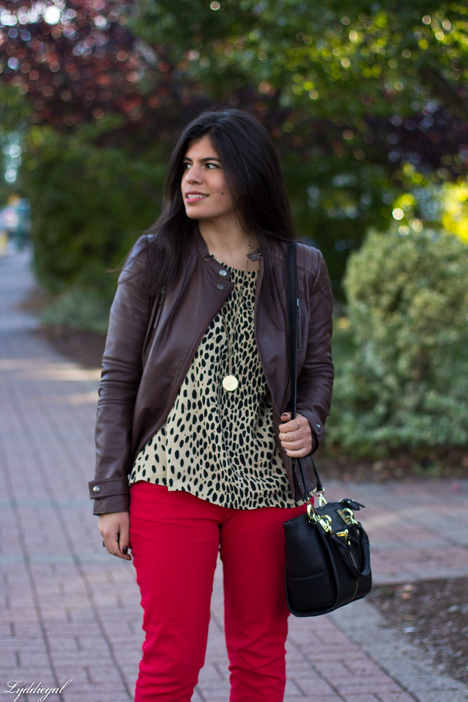 leopard tunic, red pants, leather jacket-3.jpg