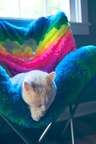 Sleeping under the rainbow.
