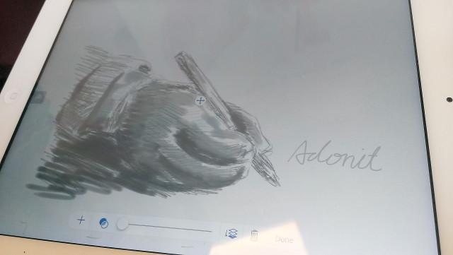 IMAG0244_Adonit!_s