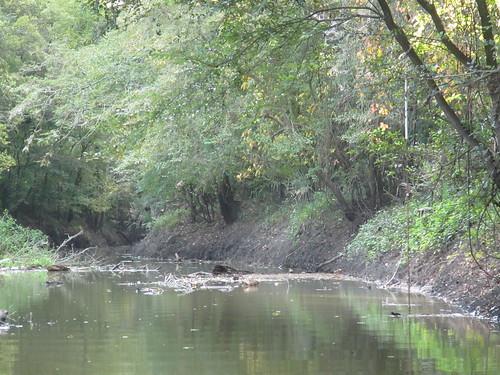 Standard Low Water