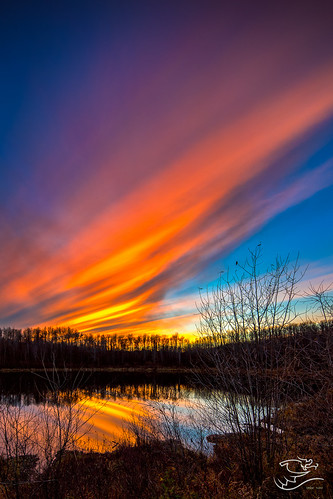 autumn trees sunset canada clouds landscape 124 alberta byerslake drewmayphotography chickacoohills