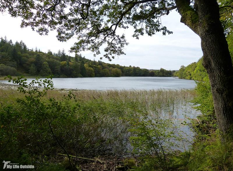 P1090803 - Aros Park, Isle of Mull