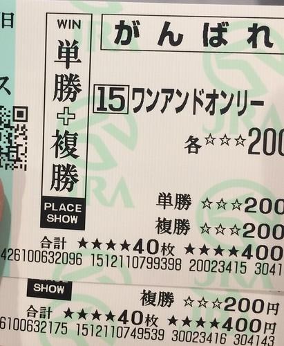 菊花賞応援馬券