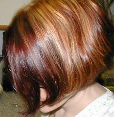 chin, hairstyle, brown, hair, brown hair, bob cut, blond, hair coloring,