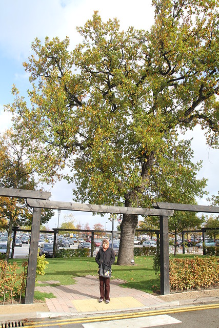 Autumn UK Trip 2014 - Cheshire Oaks Outlet