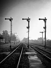 Signals and Lines