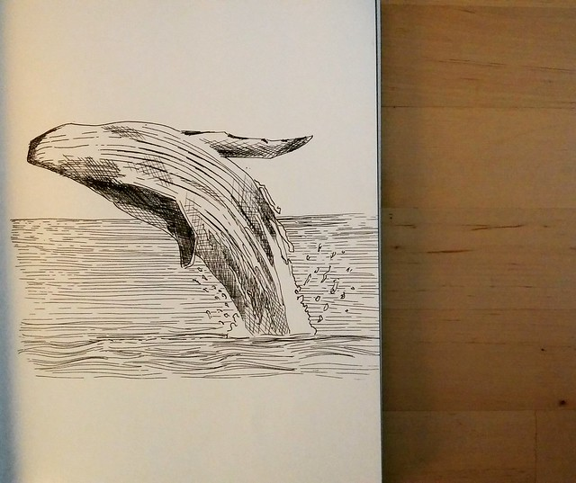 little whale for my friend