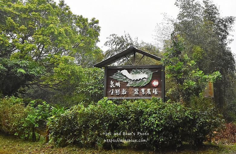 苗栗獅潭旅遊景點37