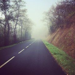 Misty ride. #velo #wilier #cycling#elemnt #fall - Photo of Vigoux