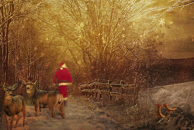 *** Santa's walk***