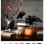 Pottery Barn Halloween 2013