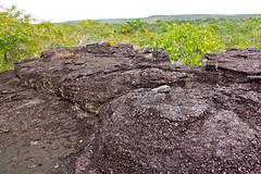 Formaciones rocosas en el tepuy colombiano
