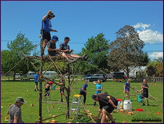 2014 Scouting Cossgrove Course, New Zealand