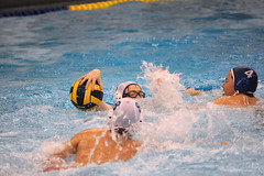 water & ball sports, water polo, swimming, sports, recreation, outdoor recreation, leisure, team sport, wind wave, swimmer, water sport, ball game,