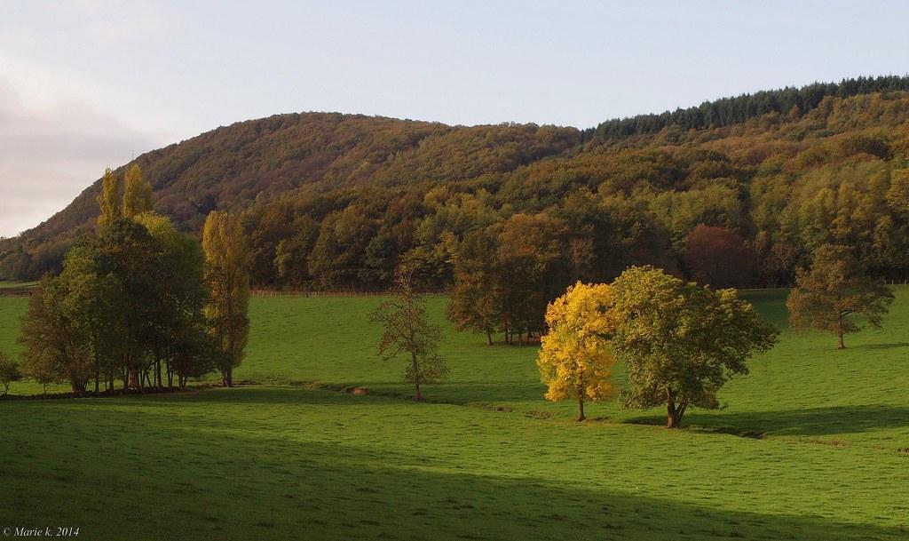 L'automne  15260988150_17fa718b43_b