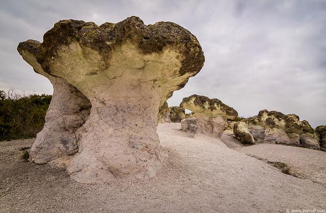Stone Mushrooms near Beli Plast, Rhodopes, Bulgaria