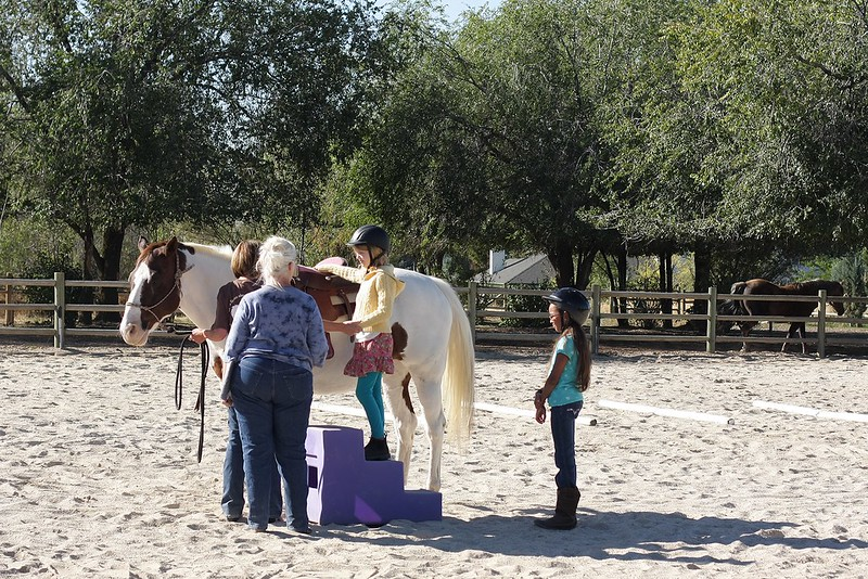 learning how to mount a horse