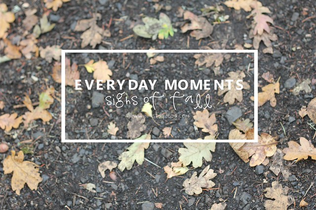 everydaymoments