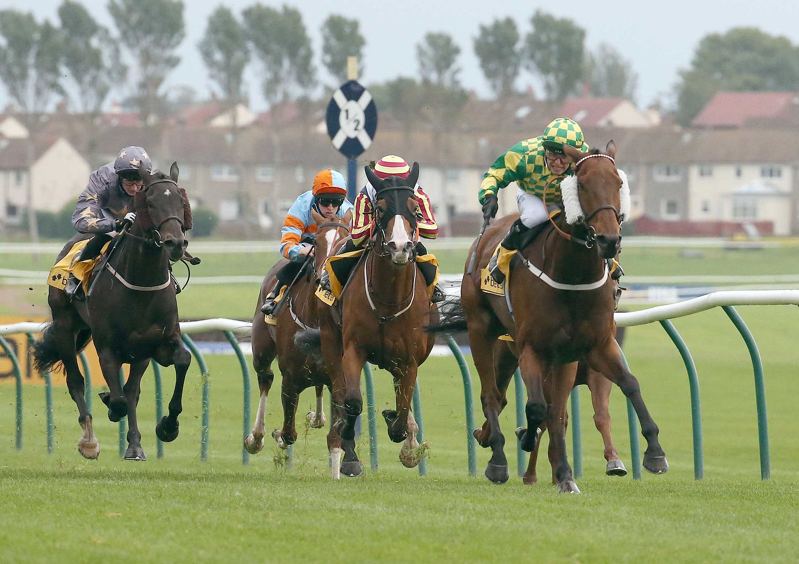 Camerooney wins Betfair prize at Ayr Racecourse