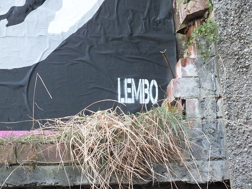 Empty Walls 2014: Lembo