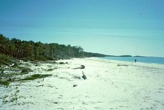 1999 Florida - 0027