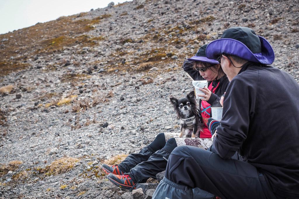Hiking with a chihuahua on Mt Tarumae, Hokkaido, Japan
