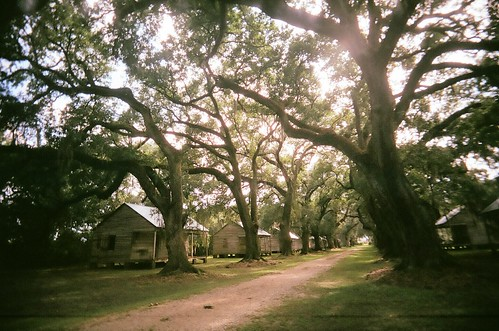 Slave cabins at Evergreen
