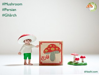 Can you tell we love mushrooms? ;) Playmobil Mushroom Fairy is learning Persian aka Farsi with the help of our wood blocks!