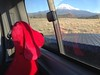 Red Dog Waves Bye to Mt Shasta...