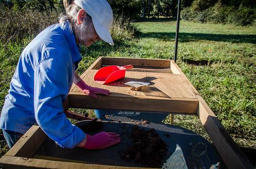 Pottersville Excavation-007