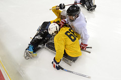 alpine skiing(0.0), freestyle skiing(0.0), nordic combined(0.0), ski cross(0.0), roller in-line hockey(0.0), goaltender(0.0), ice hockey position(0.0), downhill(0.0), bandy(0.0), stick and ball games(1.0), winter sport(1.0), sports(1.0), ice hockey(1.0), hockey(1.0), player(1.0), athlete(1.0),