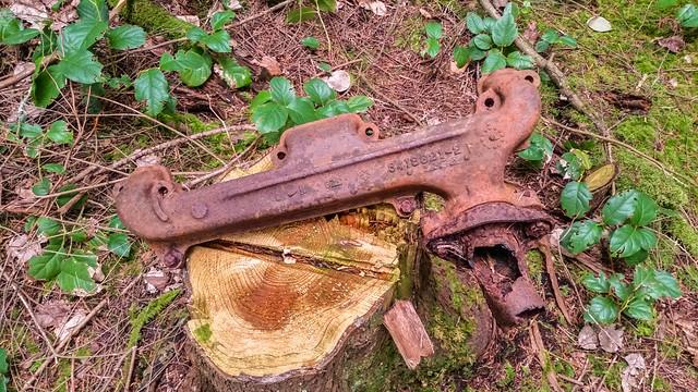logging relic