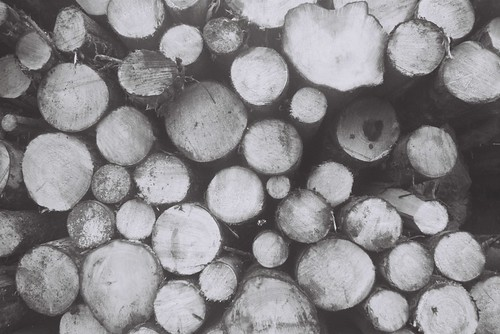 Log On A Blog
