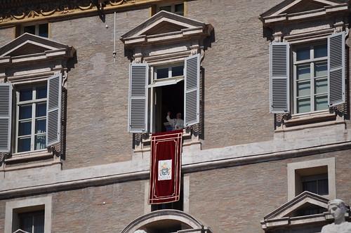Papa Francesco 17