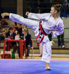 tang soo do(0.0), taekkyeon(0.0), hapkido(1.0), individual sports(1.0), contact sport(1.0), taekwondo(1.0), sports(1.0), combat sport(1.0), martial arts(1.0), karate(1.0), japanese martial arts(1.0),