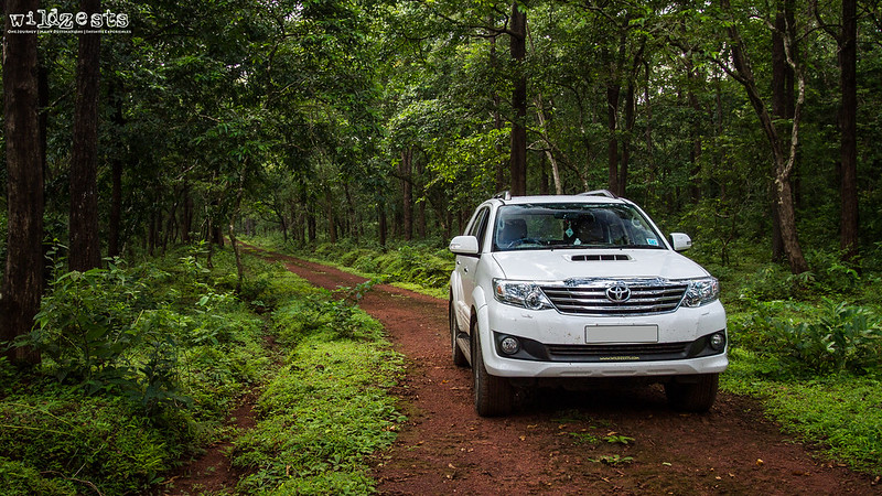 Fortuner-In-The-Wild